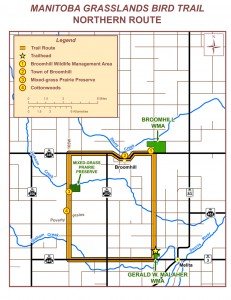The map for the north portion of the grasslands birding route.
