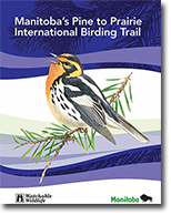 The Pine to Prairie birding guidebook is available at most tourism outlets.