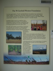 In addition to the mural, we created some introductory interpretive panels, and provided lighting and benches