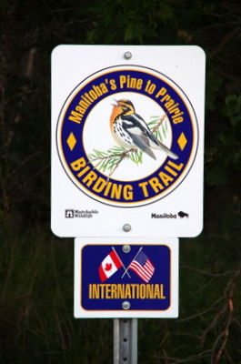 Look for the trail signs along the Pine to Prairie route through southern Manitoba.